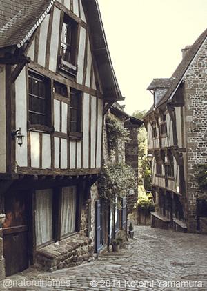 The Oak Framed Medieval Streets Dinan France