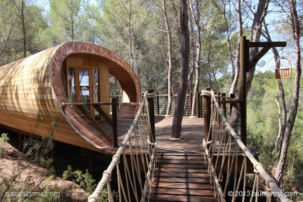 The fibonacci treehouse spain - Hotel casa arbol espana ...