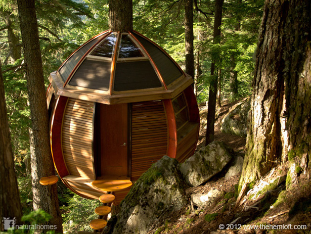 Hemloft A Canadian Treehouse