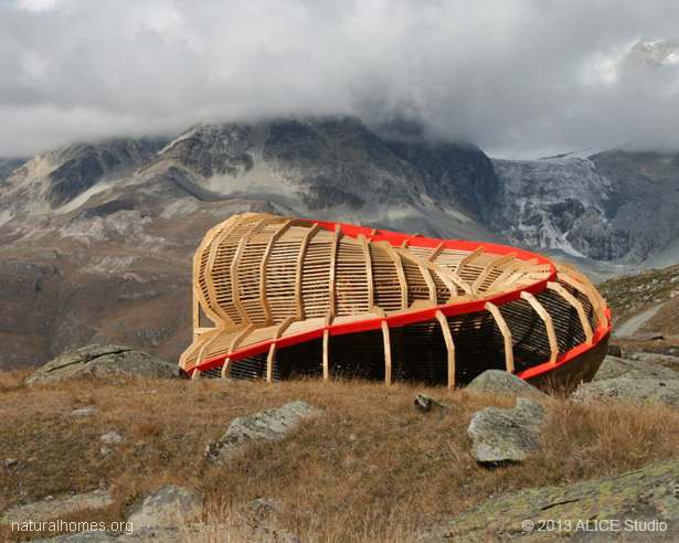 Natural Building Inspired By Nature