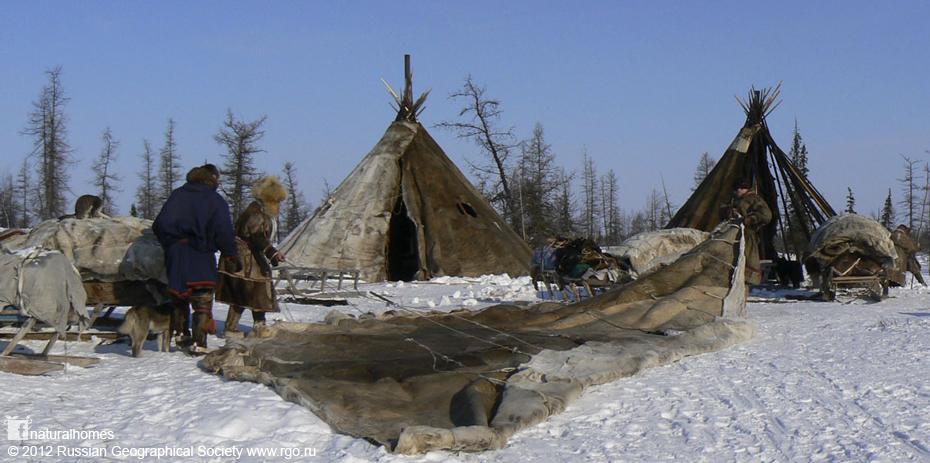 Nenet Choom of the Yamal Peninsula, Russia
