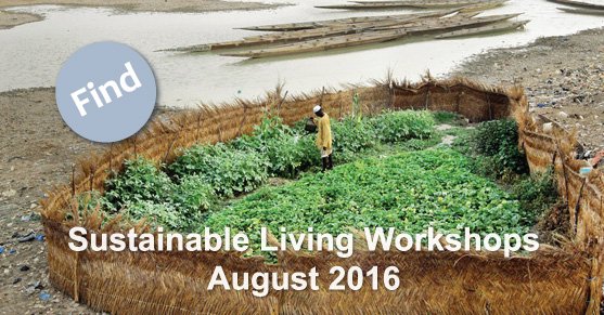 Sustainable Living Workshops: August 2016
