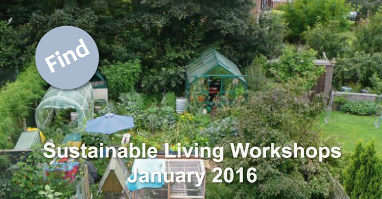 Sustainable Living Workshops: January 2016