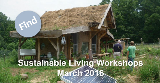 Sustainable Living Workshops: March 2016