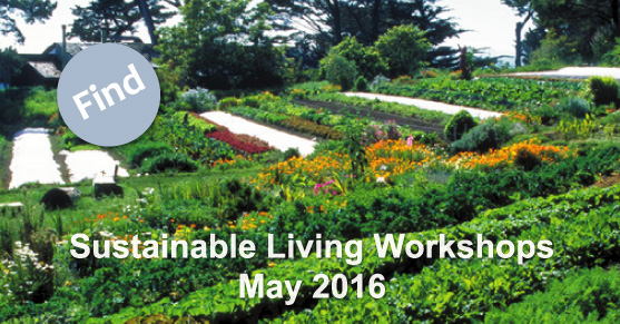 Sustainable Living Workshops: May 2016