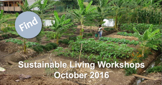 Sustainable Living Workshops: October 2016
