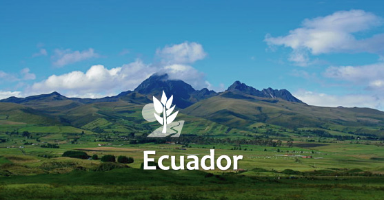 Living in Ecuador