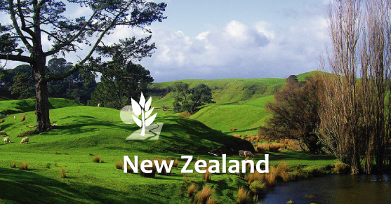 Living in New Zealand