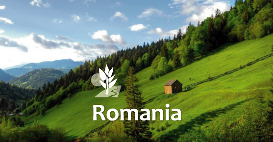 Living in Romania
