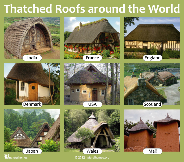 Natural building and thatched homes around the world for Different kinds of homes