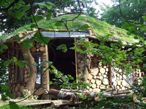 Natural Tiny Homes Around The World