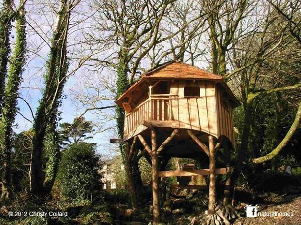 Casas en los rboles alrededor del mundo - Casas de arbol ...