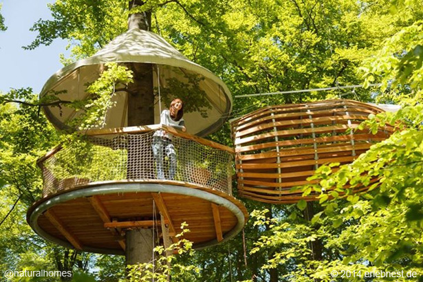treehouses around the world. Black Bedroom Furniture Sets. Home Design Ideas