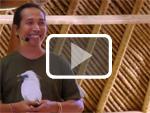 Bayu Wirayudha saving the Bali Starling