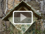 The pallet bird box